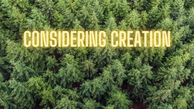 Considering Creation